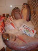 Pescheria Randazzo in via Guglielmo Marconi: pray - 21 luglio 2007   - Castellammare del golfo (2094 clic)