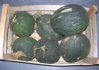 purcidduzzi (meloni bianchi) - 19 settembre 2007   - Alcamo (3357 clic)