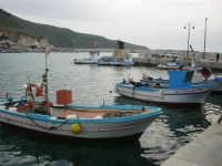 al porto - 20 aprile 2007  - Castellammare del golfo (758 clic)