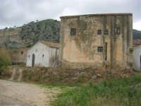 case rurali alle pendici del monte Bonifato - 15 febbraio 2009   - Alcamo (1983 clic)