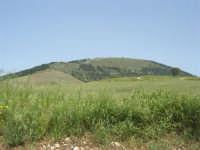 Contrada Ardigna - Montagna Grande - 17 maggio 2009  - Salemi (3064 clic)