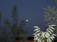 luna piena - 13 ottobre 2008   - Alcamo (755 clic)
