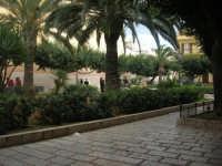 giardini pubblici - 23 marzo 2008   - Terrasini (1273 clic)