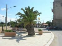 palme sul lungomare, nei pressi della Torre - 28 settembre 2008   - Marausa lido (1430 clic)