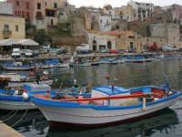 al porto le barche dei pescatori - 17 aprile 2006  - Castellammare del golfo (1152 clic)