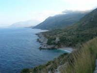 Riserva Naturale Orientata Zingaro - Cala Tonnarella dell'Uzzo e Golfo di Castellammare - 24 febbraio 2008   - Riserva dello zingaro (580 clic)