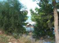 uno scorcio del porto - 20 settembre 2009    - Castellammare del golfo (1618 clic)