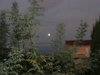 luna piena - 13 ottobre 2008   - Alcamo (793 clic)