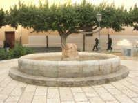 la fontana dei giardini pubblici - 23 marzo 2008    - Terrasini (1183 clic)