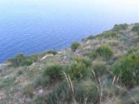 panorama - 24 febbraio 2008   - Calampiso (837 clic)