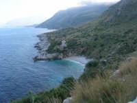 Riserva Naturale Orientata Zingaro - Cala Tonnarella dell'Uzzo e Golfo di Castellammare - 24 febbraio 2008   - Riserva dello zingaro (666 clic)
