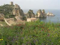 torri di avvistamento, faraglioni e tonnara - 19 aprile 2008   - Scopello (818 clic)