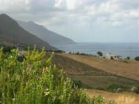 Guardando verso la Riserva dello Zingaro - 23 agosto 2005  - Scopello (1448 clic)