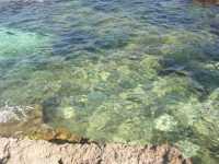 Riserva Naturale Monte Cofano - il mare - 29 luglio 2009   - Custonaci (1719 clic)