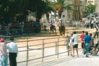 Festeggiamenti in onore di Maria Santissima dei Miracoli, Patrona di Alcamo - Il Palio - Viale Italia (alla rotonda) - 19 giugno 2002  - Alcamo (1760 clic)