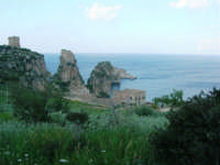 torri di avvistamento, faraglioni e tonnara - 1 maggio 2007  - Scopello (988 clic)