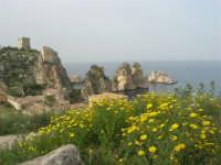 torri di avvistamento, faraglioni e tonnara - 19 aprile 2008  - Scopello (794 clic)
