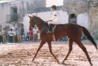 Festeggiamenti in onore di Maria Santissima dei Miracoli - Corse dei cavalli: dopo l'arrivo a Porta Trapani, accanto alla Chiesa di S. Maria delle Grazie - giugno 1982  - Alcamo (2489 clic)