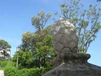 Balio - 22 maggio 2009  - Erice (2095 clic)