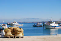 al porto - 21 gennaio 2008  - Castellammare del golfo (571 clic)