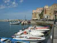 al porto - 18 settembre 2009   - Castellammare del golfo (886 clic)