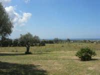C/da Digerbato - Tenuta Volpara - panorama fino al mare - 27 aprile 2008   - Marsala (896 clic)