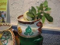 Cous Cous Fest 2007 - Expo Village - itinerario alla scoperta dell'artigianato, del turismo, dell'agroalimentare siciliano e dei Paesi del Mediterraneo - cuscusiere - 28 settembre 2007   - San vito lo capo (570 clic)