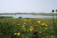 Lago Rubino - 17 maggio 2009  - Fulgatore (1811 clic)