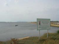 Riserva delle Isole dello Stagnone - 24 settembre 2007  - Marsala (864 clic)