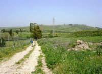 Parco Faunistico - Venatorio di Baglio Trinità - 22 aprile 2007    - Castelvetrano (1225 clic)