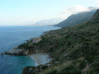 Riserva Naturale Orientata Zingaro - Cala Tonnarella dell'Uzzo e Golfo di Castellammare - 24 febbraio 2008   - Riserva dello zingaro (785 clic)