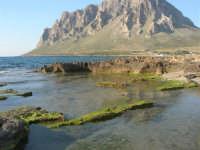 Golfo di Bonagia: il Monte Cofano - 27 aprile 2008   - Cornino (871 clic)