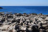 Golfo del Cofano: mare stupendo - 24 febbraio 2008   - San vito lo capo (619 clic)