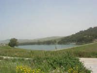 Lago Trinità, detto anche Delia - 22 aprile 2007    - Castelvetrano (1641 clic)