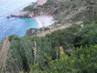 Riserva Naturale Orientata Zingaro - Cala Tonnarella dell'Uzzo - 24 febbraio 2008   - Riserva dello zingaro (1116 clic)