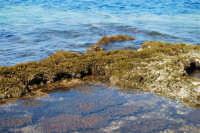 Golfo del Cofano: mare stupendo - 24 febbraio 2008   - San vito lo capo (595 clic)