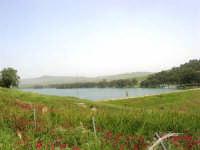 Lago Trinità, detto anche Delia - 22 aprile 2007    - Castelvetrano (1834 clic)