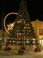 l'albero di Natale in piazza Ciullo - 17 dicembre 2008  - Alcamo (1235 clic)