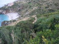 Riserva Naturale Orientata Zingaro - Cala Tonnarella dell'Uzzo - 24 febbraio 2008   - Riserva dello zingaro (1067 clic)