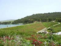 Lago Trinità, detto anche Delia: la diga - 22 aprile 2007    - Castelvetrano (2234 clic)