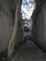 per le vie del paese: un cortile - 6 luglio 2007  - Erice (1004 clic)