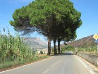 strada statale 113 - 4 ottobre 2007  - Calatafimi segesta (1319 clic)