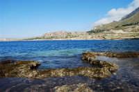Golfo del Cofano: mare stupendo - 24 febbraio 2008   - San vito lo capo (603 clic)