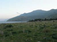 panorama dalla tonnara - 24 febbraio 2008  - San vito lo capo (517 clic)