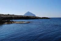 Golfo del Cofano: mare stupendo - 24 febbraio 2008   - San vito lo capo (573 clic)