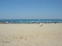Golfo del Cofano - spiaggia e mare - 8 agosto 2008   - San vito lo capo (504 clic)