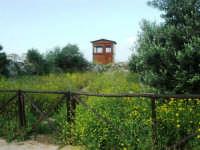 torretta di controllo - 1 maggio 2007  - Riserva dello zingaro (1192 clic)