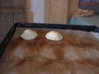 la preparazione delle genovesi - C.da Digerbato - Tenuta Volpara - 21 dicembre 2008   - Marsala (1503 clic)