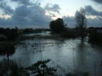 fiume straripato dopo le abbondanti piogge della notte precedente - 1 febbraio 2009   - Marsala (4938 clic)