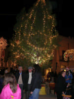 atmosfera natalizia in piazza Ciullo - 23 dicembre 2006   - Alcamo (1113 clic)